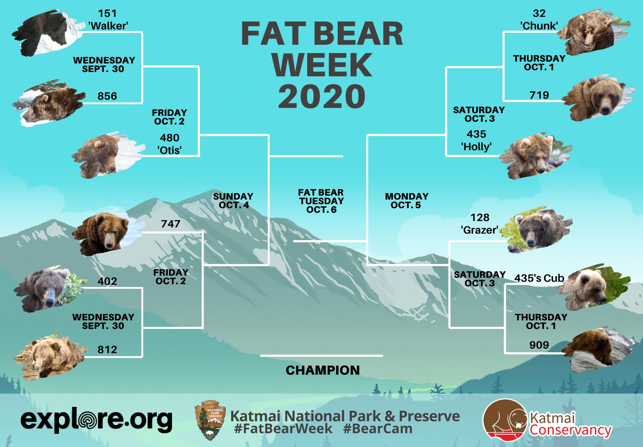 fat bear week bracket